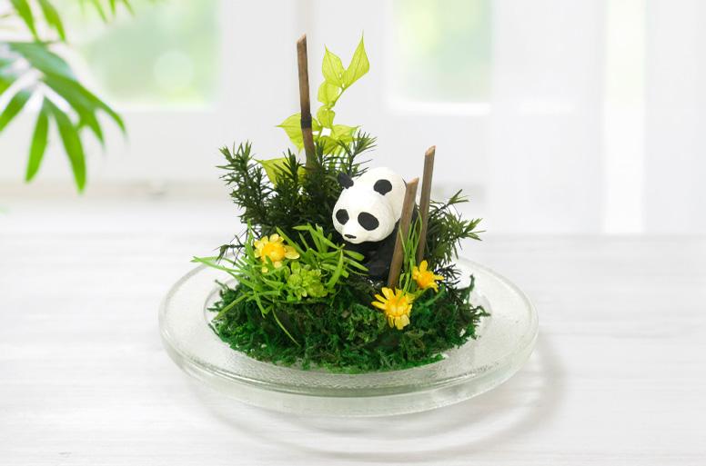 かわいい電報6選「プリザプランツ パンダ」