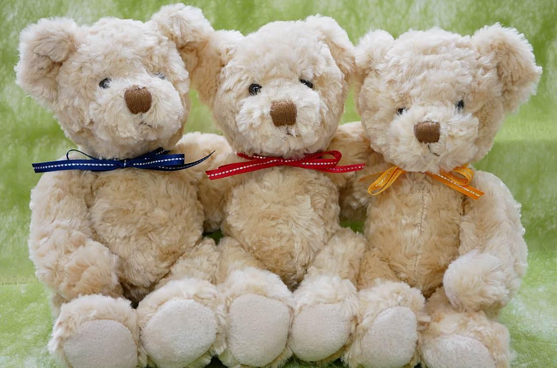 クマのぬいぐるみのセット「Bears」